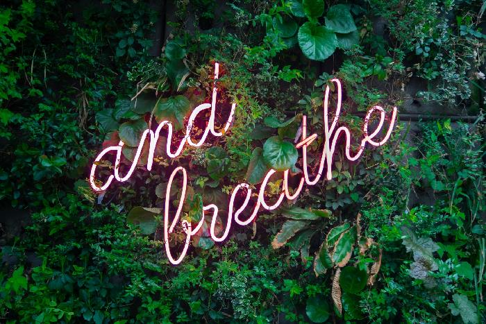 Neon sign on green leaves reading 'and breathe'