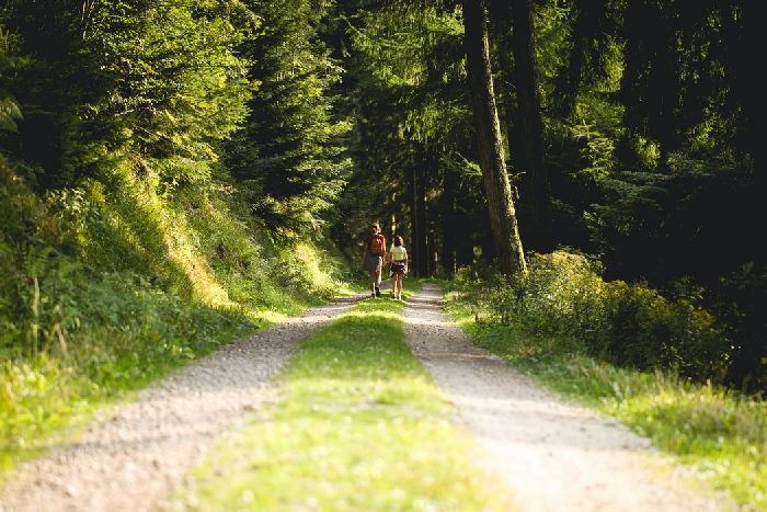 Two people walking along country path lined with trees