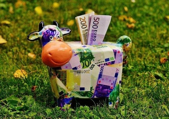 A cow piggy bank saving your money