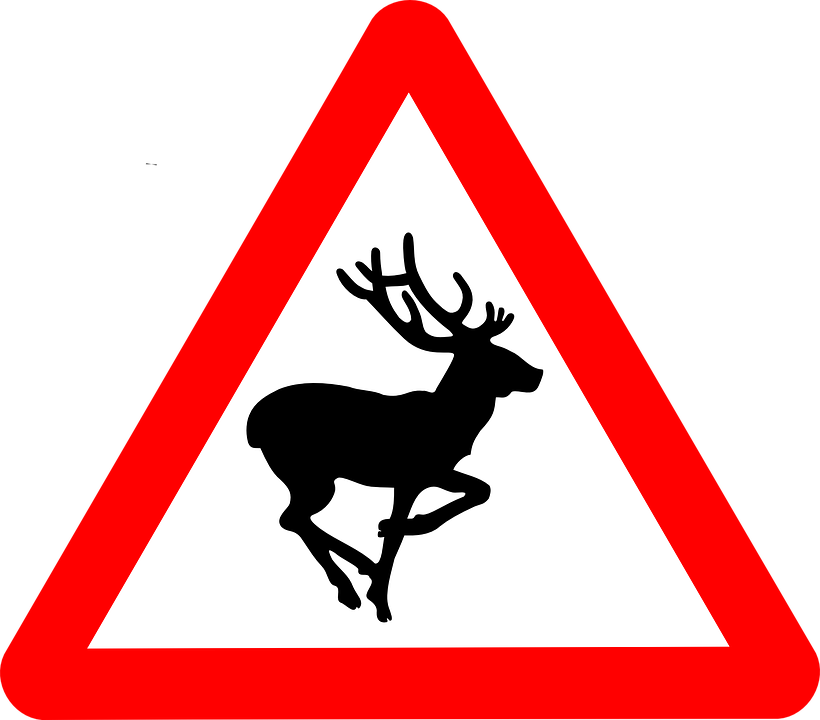 Road sign warning of deer