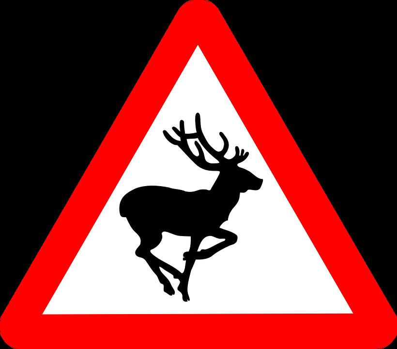 Road sign warning of deer