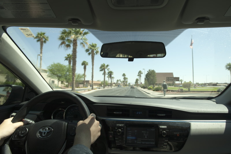 View of person holding a steering wheel while driving down a road lined with palm trees