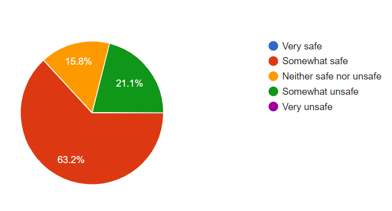 Pie chart with instructor responses to lesson safety