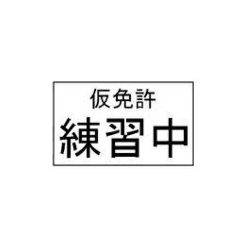 Japanese learner plate roughly translating to 'In Practice'