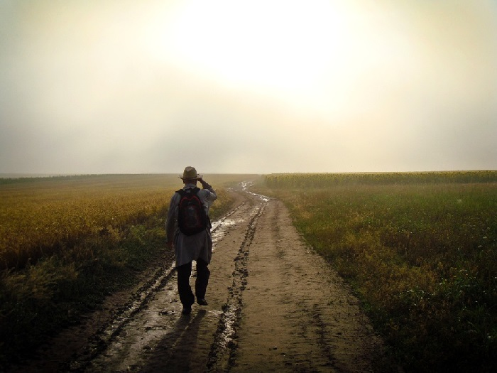 Man with backpack walking away from the camera down a country road