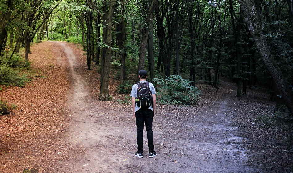 Person stood between two different paths in woods