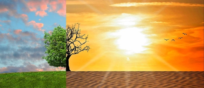 Illustration showing the potential effects of global warming