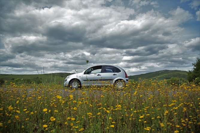 A silver Citroën C3 with yellow meadow flowers in the foreground