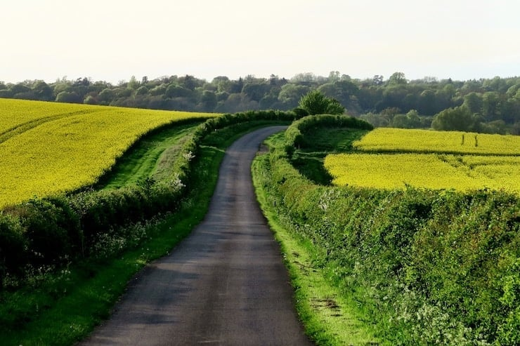 A single carriageway country lane surrounded by fields