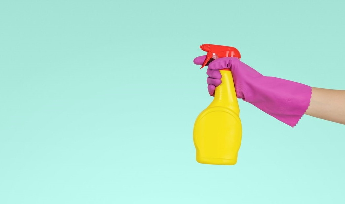 Hand wearing purple rubber glove holding yellow spray bottle